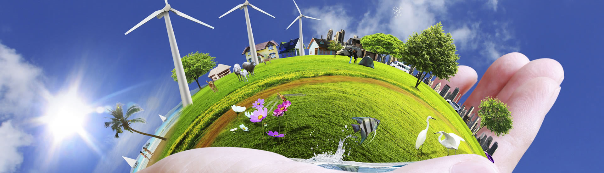 Que es la Sustentabilidad