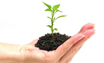 Sustentabilidad Aspecto Ambiental